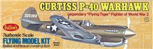 View Product - Curtiss P-40 Warhawk 419 mm