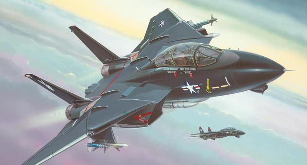 View Product - 1:144 F-14 Tomcat Black